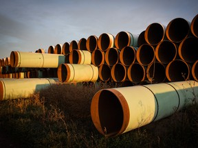 Miles of unused pipe, prepared for the proposed Keystone XL pipeline, sit in a lot  outside Gascoyne, North Dakota.