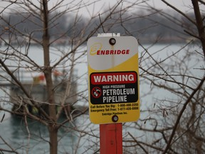 The Michigan Attorney General Dana Nessel filed an injunction Monday asking a county judge in the state to suspend operation of Line 5, which carries 540,000 barrels of oil per day.