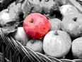 A red apple among grey apples in a basket