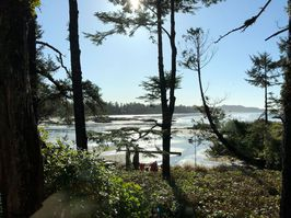The sun shines through the early morning mist on Tofino's Chesterman Beach, viewed from a guest room at the Wickaninnish Inn.