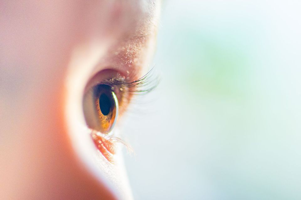 closeup photo of brown eyes