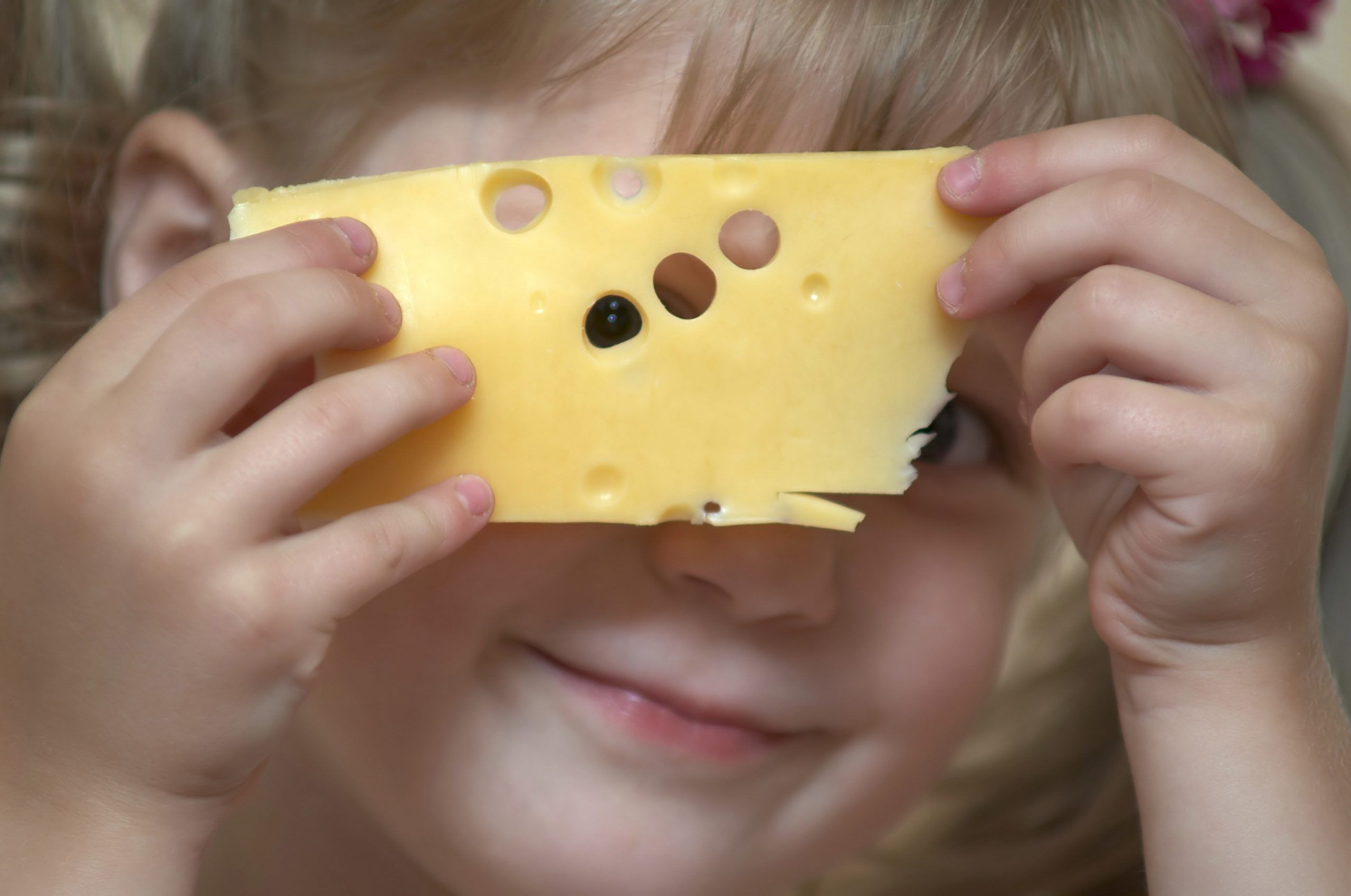 Finally, good news: Cheese is good for our brain