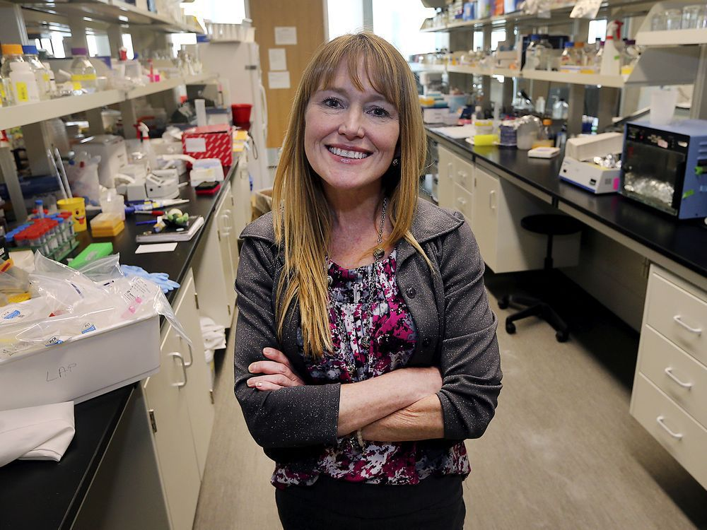 UWindsor scientists receive grant for prostate cancer research
