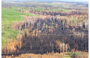 An aerial view of burned forest near Weyakwin on July 15. On Wednesday, the province was still battling 47 fires in northern Saskatchewan. THE CANADIAN PRESS/Pool/Liam Richards-The StarPhoenix