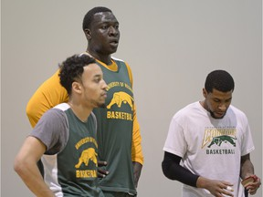 The University of Regina Cougars' newest player is Rawane (Pops) Ndiaye (middle). The 6-foot-10, 275-pound post has transferred to the U of R from the University of Tennessee.