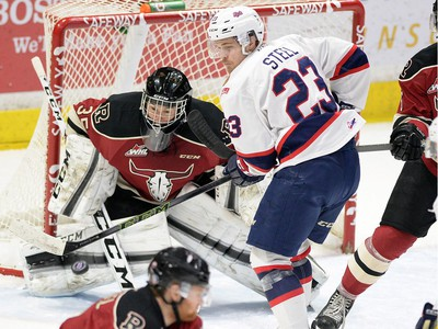 Centre Sam Steel, 23, is already a key producer for the Regina Pats, for whom he is expected to be a centrepiece during the 2016-17 and 2017-18 WHL seasons.