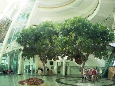 Trees inside the atrium of the First Nations University of Canada in an artist's rendering. Courtesy FNUniv.