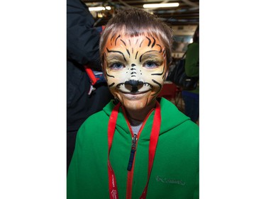 Nathan Goldsney displays his finished tiger face paint during the Oktoberkinderfest event at the German Club.