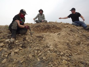 A team of paleontologists from the Canadian Museum of Nature in Ottawa is searching for mammal fossils from the Miocene period at Grasslands National Park from August 17 to 27. From left to right: Brigid Christison, Margaret Currie and Matthew Brenning.