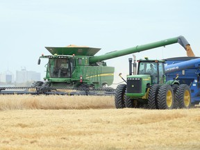 Agricultural exports were a bright spot for Saskatchewan's economy in 2020.