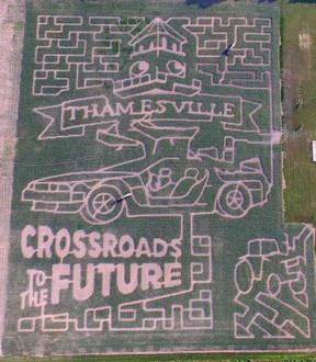The Thamesville Corn Maze design this year features Thamesville's slogan - Crossroads to the Future - as well as the DeLorean from the Back to the Future movies, which is meant to tie in to an event in Thamesville called Crossroads Back to the Future. (Handout/Postmedia Network)