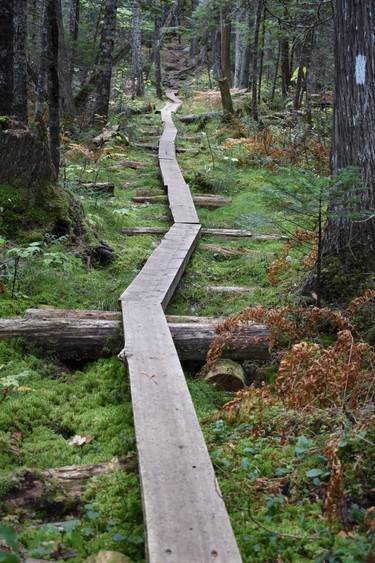 Hikers are required to walk the plank in Maine's 100 Mile Wilderness, the longest stretch of wilderness  along the 2,190-mile trail.  IAN NEWTON/Special to Postmedia News Appalachian Trail 2019