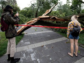 People survey the damage after a storm ripped through N.D.G. Park, damaging most trees in the park, in Montreal on Tuesday August 22, 2017.