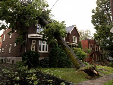 A damaged tree crushed the roof of a home on Royal Ave. after a storm ripped through Notre-Dame-de-Grâce in Montreal on Tuesday August 22, 2017. The homeowner says the city had recently dug up the roots to replace a section of sidewalk directly in front of the tree.