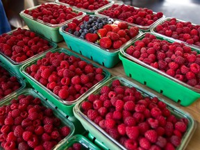 A diet high in berries and fresh vegetables has been proposed to treat multiple sclerosis, but Joe Schwarcz isn't convinced.