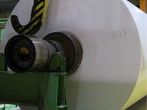 When the plant is fully operational, it will produce about 300,000 tons of pulp a year.