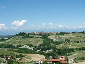 Piedmont is also home to nebbiolo and barbera, but the lesser-known dolcetto is well worth a taste.