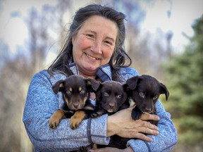 Helen Lacroix of Animatch in Pointe-Fortune says she has been inundated with adoption requests.