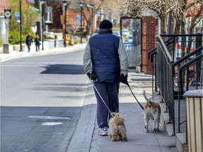 A man walks his dog on a narrow sidewalk on Ste-Anne St. in Ste-Anne-de-Bellevue May 12, 2020.