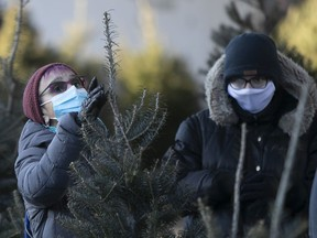 A woman has a long look for the perfect Christmas tree at the Jean-Talon market on Dec. 18, 2020.