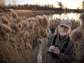 Jim Harris is one of the activists trying to turn the St-Laurent Technoparc lands into a wildlife reserve.