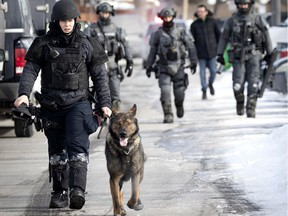 An SPVM dog handler leads SWAT team members as they return to their armoured truck after an intervention in Dollard-des-Ormeaux Feb. 13, 2021.
