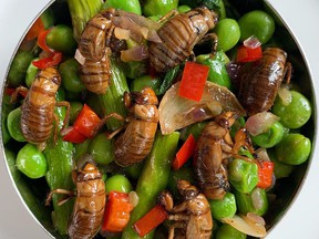 Cicadas in a menu offering that includes other spring ingredients such as asparagus and peas.