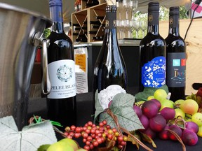 Pelee Island Winery is considered the daddy of local wineries