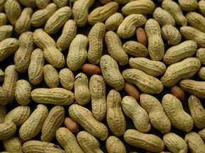 Good news for the estimated 700,000 Canadians who have a peanut allergy.
