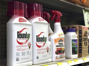 In this Thursday, Jan. 26, 2017, photo, containers of Roundup, left, a weed killer is seen on a shelf with other products for sale at a hardware store in Los Angeles. California regulators are taking a pivotal step toward requiring the popular weed killer Roundup to come with a warning label. The state's Office of Environmental Health Hazard Assessment announced Monday, June 26, 2017, that the weed killer's main ingredient, glyphosate, will be listed in July as a chemical known to cause cancer. (AP Photo/Reed Saxon)