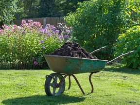 There are many kinds of mulch...