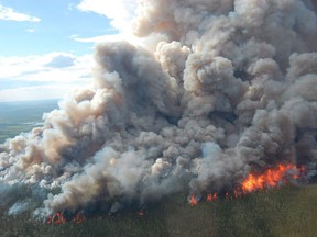 A wildfire burns in the boreal forest of Wood Buffalo National Park, June 17, 2014. Canada loses 20 times more forested land to fires and invasive bugs each year than it does to harvesting wood for industry and Canada's lumber association says climate change is making it worse.