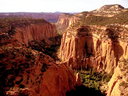 The Upper Gulch section of the Escalante Canyons within Utah's Grand Staircase-Escalante National Monument features sheer sandstone walls, broken occasionally by tributary canyons.