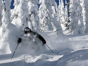 A skier enjoys the lower trees off Hellroaring Peak at Whitefish Mountain Resort in Montana.