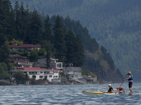 A dog stands on a stand up paddle board as two women enjoy the summer temperatures in Deep Cove in North Vancouver, B.C. Saturday, June 29, 2013. Real estate company Royal LePage is predicting British Columbia's new speculation tax on out-of-province buyers will likely convince a wave of owners to sell their vacation properties, pushing down home prices.