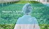 """Those visiting Aphria's corporate page are greeted by the tagline """"powered by the sun' accompanied by the image of a worker in a white labcoat and hairnet, designed to give consumers the impression of a clinical and safety-oriented brand."""