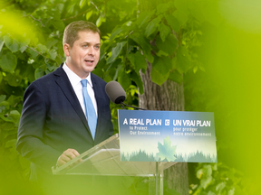 Conservative Leader Andrew Scheer delivers a speech on the environment in Chelsea, Que., on June 19, 2019.