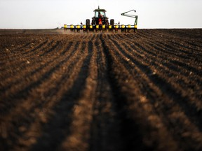 A crop farmer plants corn for the first time of the season in 2011.