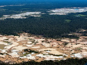 An aerial view over a chemically deforested area of the Amazon jungle caused by illegal mining activities in the river basin of the Madre de Dios region in southeast Peru, on May 17, 2019, during the 'Mercury' joint operation by Peruvian military and police ongoing since February 2019.
