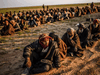 Men suspected of being Islamic State (IS) fightrs wait to be searched by members of the Kurdish-led Syrian Democratic Forces, Feb. 22, 2019.