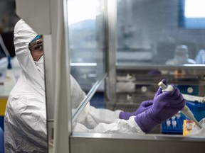 A scientist at VirPath university laboratory on February 5, 2020 works on a treatment against the new SARS-like coronavirus, which has already caused more than 560 deaths.