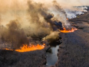 This picture taken on April 10, 2020, shows a field fire burning at a 30-kilometre (19-mile) Chernobyl exclusion zone, not far from the nuclear power plant.