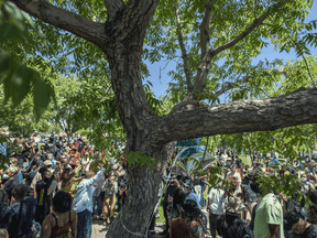 People protest near the tree that authorities say Robert Fuller, a 24-year-old black man, was found hanging dead from on June 13, 2020 in Palmdale, California.