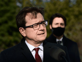 Federal Environment and Climate Change Minister Jonathan Wilkinson and Prime Minister Justin Trudeau behind him, in November 2020.