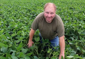 Grande Pointe, Ont. farmer Joe Pinsonneault displays the flowers that are coming on to his crop of soybeans, which will become the pods that will hold the beans. (Postmedia Network file photo)
