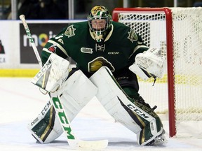 London Knights goalie Joseph Raaymakers plays against the Sarnia Sting at Progressive Auto Sales Arena in Sarnia, Ont., on Wednesday, Nov. 22, 2018. Mark Malone/Chatham Daily News/Postmedia Network