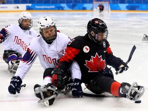 Tyler McGregor (8) of Canada battles for the puck with Rolf Einar Pedersen of Norway in a para hockey preliminary-round game at the 2018 Pyeongchang Paralympic Games on March 12, 2018, in Gangneung, South Korea.  (Photo by Martin Rose/Getty Images)