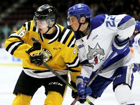 Sarnia Sting's Theo Hill (16) battles Sudbury Wolves' Jack Thompson (22) in the third period at Progressive Auto Sales Arena in Sarnia, Ont., on Saturday, Jan. 18, 2020.