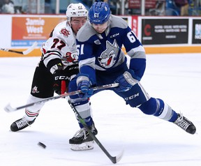 Chase Stillman of the Sudbury Wolves battles for the puck with Dakota Betts of the Niagara Ice Dogs during Sunday Night OHL action from the Sudbury Community Arena.