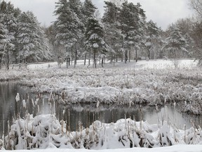 Snow cloaks the shoreline of a pond at Fielding Parkin this file photo